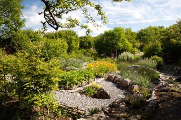 herb garden south