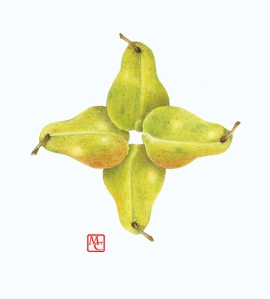 Four pears, color pencil on paper