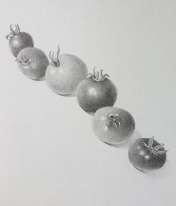 Cherry tomato study, graphite