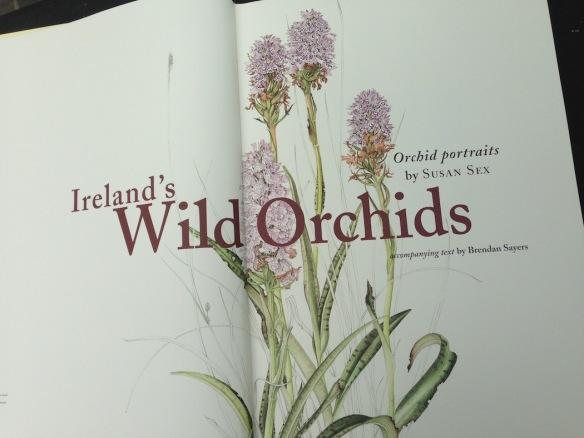 wild orchids susan sex