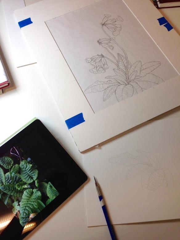 work in progress 6-23