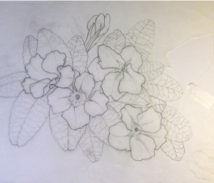 initial drawing 7-15