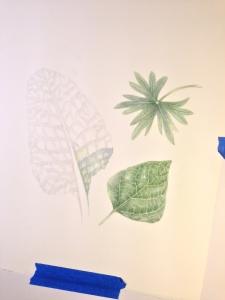 leaf study 9-6